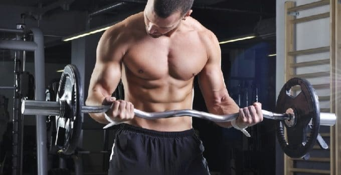 Barbell Curl Exercises