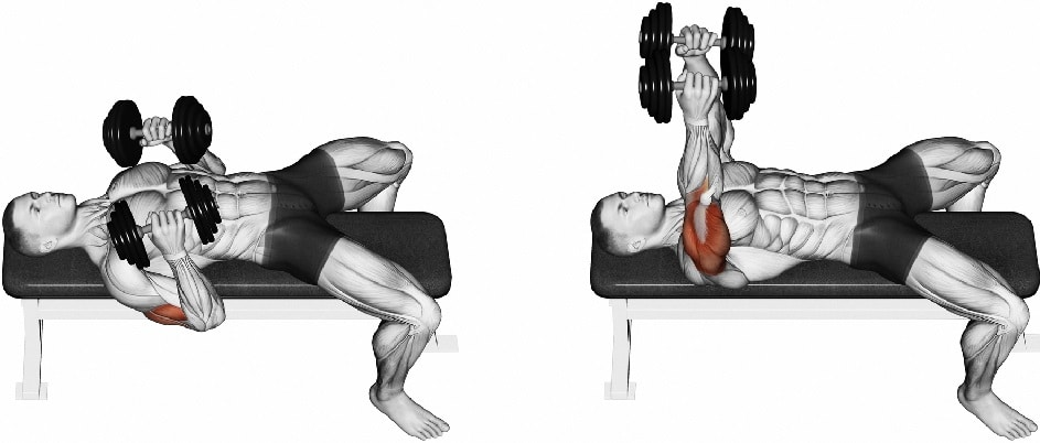 Dumbbell Flat Press